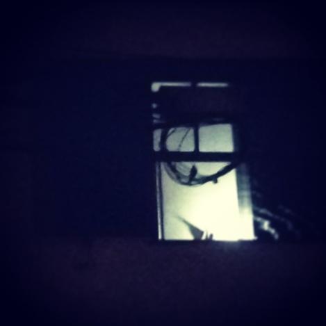 vida se apresenta na janela